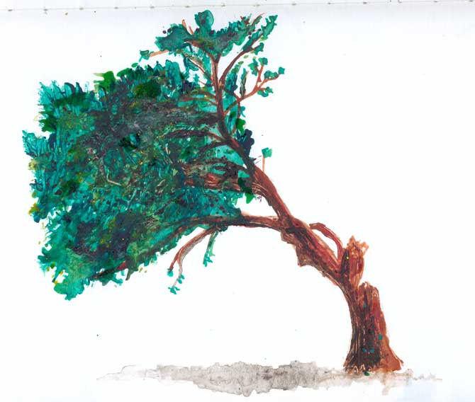 Water Colour Tree For This Site Design Today